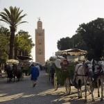 Calesas en Marrakech