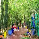 Los Jardines Majorelle